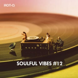 Soulful Vibes, Vol. 12