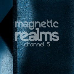 Magnetic Realms