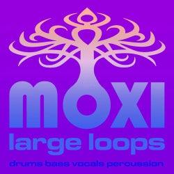 Moxi Large Loops Volume 9