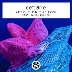 Keep It on the Low (Extended Mix)