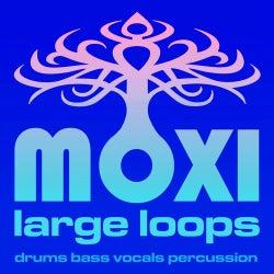 Moxi Large Loops Volume 8