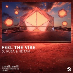 Feel The Vibe (Extended Mix)