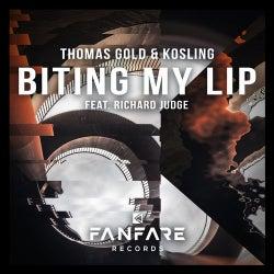 Biting My Lip (feat. Richard Judge)