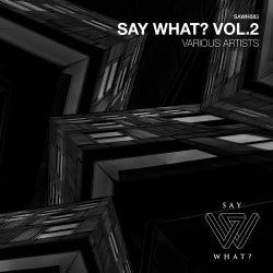 Say What?, Vol. 2