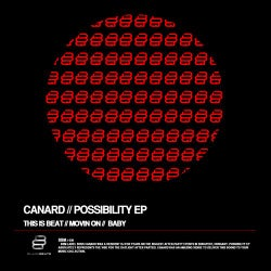 Possibility Ep