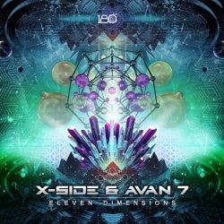 Eleven Dimensions