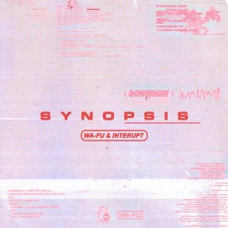 Synopsis (Extended Mix)