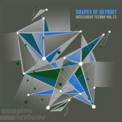 Shape of Detroit, Intelligent Techno, Vol. 13