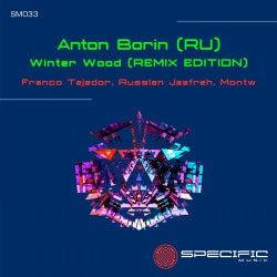 Winter Wood [REMIX EDITION]