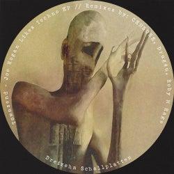 Joe Rogan Likes Techno EP