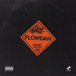 Level (feat. Irah)