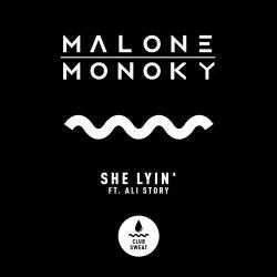 She Lyin' (Extended Mix)