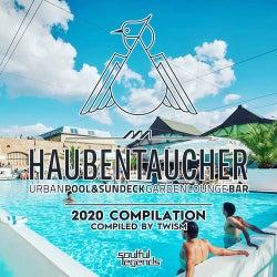 Haubentaucher 2020