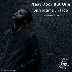 Springtime In Flow (Extended Mixes)