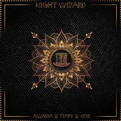 Noir (Night Wizard Series)