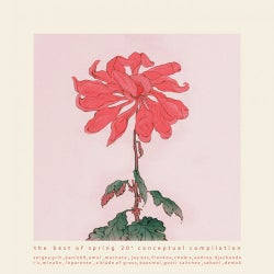 The Best of Spring '20 Conceptual Compilation