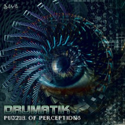 Puzzle of Perceptions