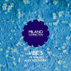Vibe 5 (Alex Rise Remix)