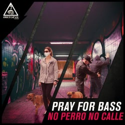 No Perro No Calle