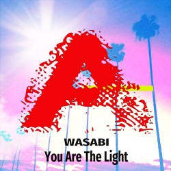 You Are The Light ( Extended Mix )