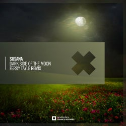 Dark Side of The Moon (Ferry Tayle Remix)