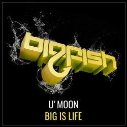 Big is Life