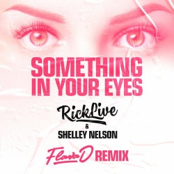 Something In Your Eyes (Flava D Remix)