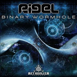 Binary Wormhole