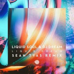 Liquid Dream (Sean Tyas Remix)