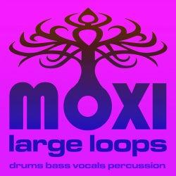 Moxi Large Loops Volume 6