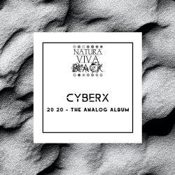 20 20 - The Analog Album