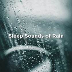 Thunder Storms & Rain Sounds Tracks & Releases on Beatport
