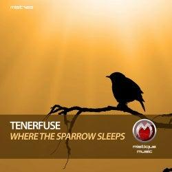 Where The Sparrow Sleeps