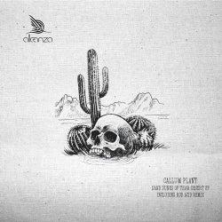 Sand Dunes Of Thar Desert EP