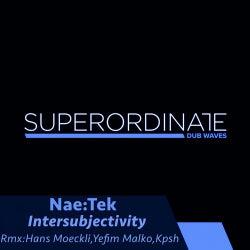 Intersubjectivity ( the Remixes )
