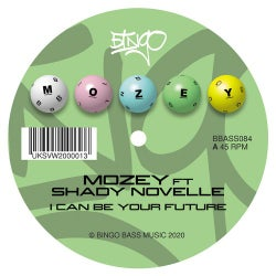 I Can Be Your Future (feat. Shady Novelle)