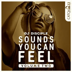 Sounds You Can Feel, Vol. 2