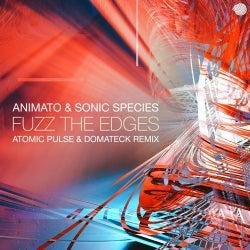 Fuzz the Edges (Atomic Pulse & Domateck Remix)