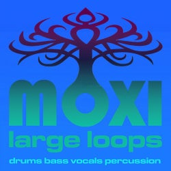 Moxi Large Loops Volume 5