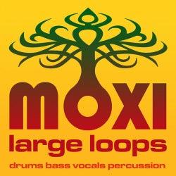 Moxi Large Loops Volume 1