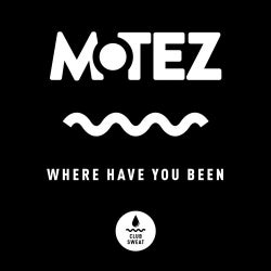 Where Have You Been (Extended Mix)