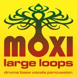 Moxi Large Loops Volume 7