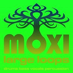 Moxi Large Loops Volume 3