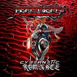 Cybernetic Romance