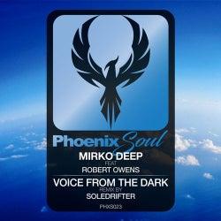 Voice From The Dark