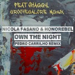 Own The Night (Pedro Carrilho Remix)