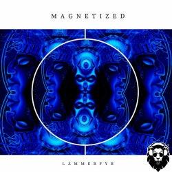 Magnetized (Original Mix)