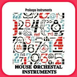 House Orchesta Instruments