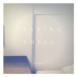 bb4dc522889 Leaking Shell Releases on Beatport
