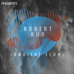 Ambient Flow